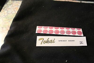 Tokay Stratocaster oder Telecaster Decal zur Reperatur