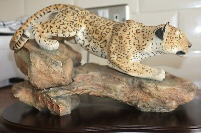 "Country Artists , The Natural World Collection. Leopard  ""The Untamed Spirit"""