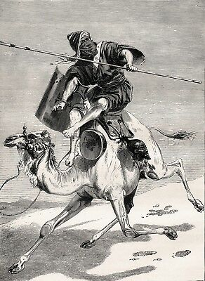 Camel with Muslim Moor North African Rider, Wild Ride! Beautiful 1870s Print