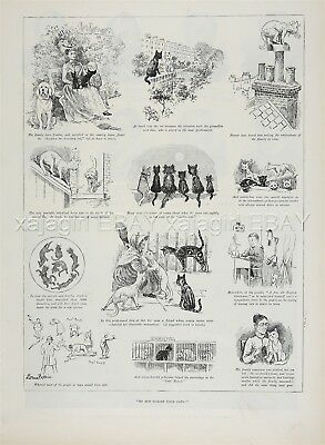 Cat Cruelty Rescue, Left Behind then Saved, by Louis Wain, 1890s Antique Print
