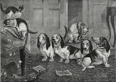 "Dog Bassett Hounds ""New"" Breed & Cats Getting in Trouble, 1880s Antique Print"