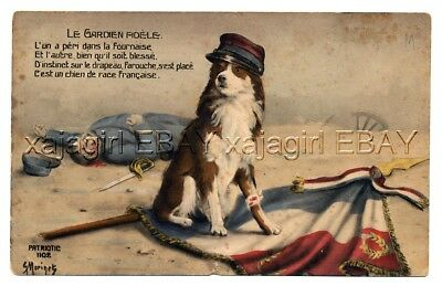DOG Border Collie Hero Guards Flag, War Dog, Search & Rescue Dogs, Art Postcard