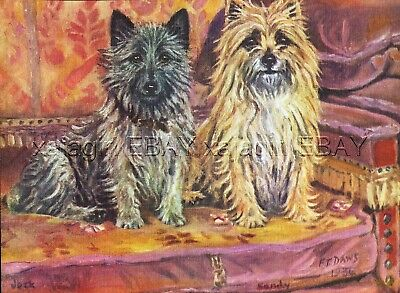DOG Cairn Terriers Jock and Sandy, Beautiful 1930s Color Linen Print by F T Daws