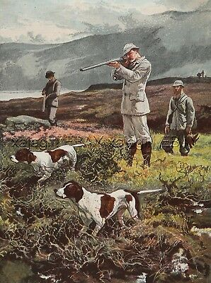 DOG Pointer Dogs on Point, Hunting on the Moors, Large 1880s Antique Color Print