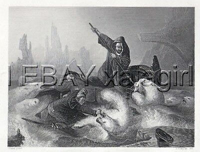 POLAR BEAR Attack Arctic Explorers, Antique 1840s Steel Engraving Print