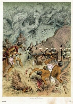 RHINOCEROS Hunt Natives, 1866 Hand-Colored Engraving