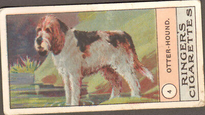 DOG Otterhound, Very Rare Trading Card, 1908