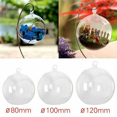 6Pcs Clear Glass Ball Orb Globe Garden Tree Hanging Tealight Candle Holder