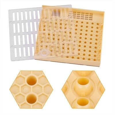 Bee Queen Rearing Cell Cupkit Box Case For Cupularve System Beekeeping Tool Kit