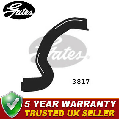 CITROEN BERLINGO MFWJZ 1.9D Radiator Hose Upper 98 to 05 DW8 Coolant Gates New