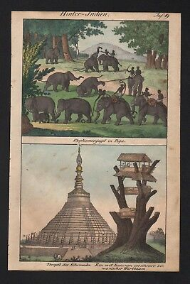 1830 - India elephant elephants temple Asia hunting natives costumes Lithograph
