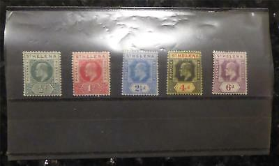 Collection of 5 Postage Stamps from St Helena (1908-11) MNH