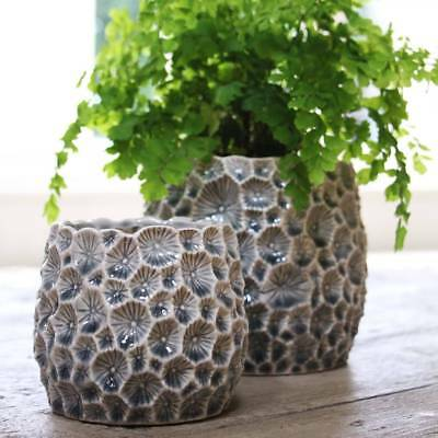 Decorative Grey Crater Ceramic Planter Plant Pot, truly striking and unusual.