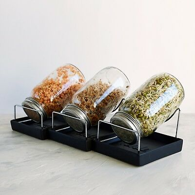 Kenley Seed Sprouter Germinator Sprouting Kit with Mason Jars Lids & Stands