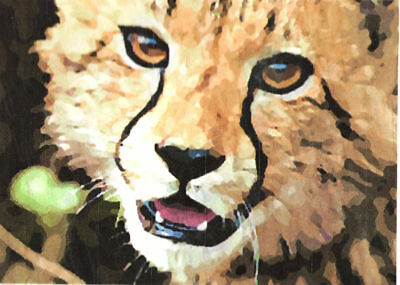 ACEO ATC Cheetah Hand-Rendered Wet Watercolor
