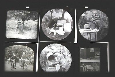 antique BEE-KEEPING LECTURE Glass Magic Lantern Slide 25x, Newton & Co + others