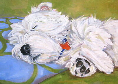 """West Highland Terrier ACEO WESTIE PRINT """"Dog Tired"""" Dog Art RANDALL"""