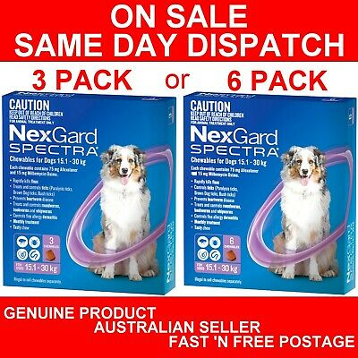 NexGard Spectra Chewables For Dogs Purple 15.1-30kg 3 Pack or 6 Pack
