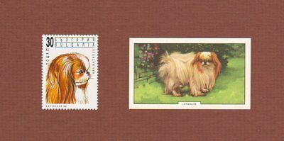Japanese Chin dog stamp and card set of 2