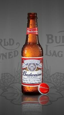 Budweiser Beer Bar Mancave Restaurant BUDMAN Decor 2.5x3.5 Fridge Magnet #1