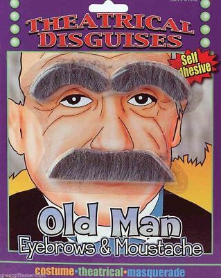 OLD MAN GRAY EYEBROWS & MUSTACHE Albert Einstein Stick On Fake Mad Scientist Gag