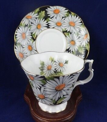 Royal Albert England Tea Cup and Saucer Sylvia Bold White Daisy Chintz on Black