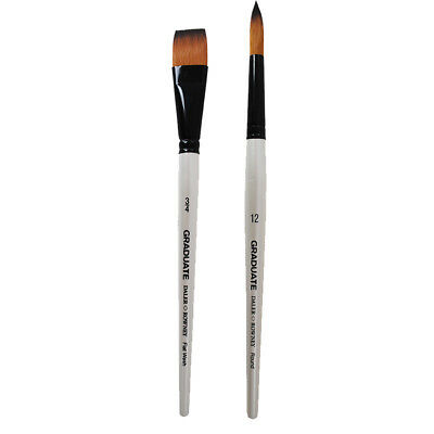 Daler Rowney Graduate Synthetic Hair Watercolour Brushes Round & Flat Bristles