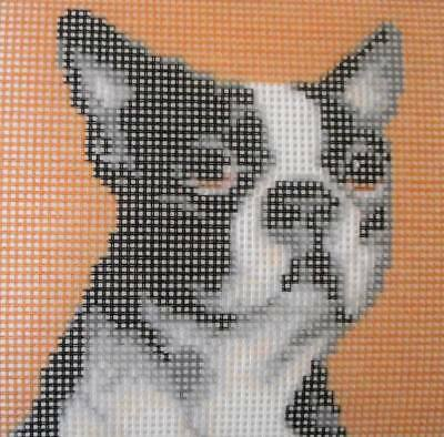 NEEDLEPOINT TAPESTRY, DOG, FRENCH BULLDOG PUPPY, 15 x 15 cm, REF 2719
