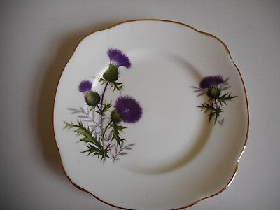 Duchess Thistle  Plate Bone China England Gold Trim (Some Wear) 15Cm