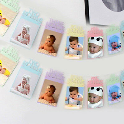 1st Birthday Recording 1-12 Months Photo Banner Garlands Baby Shower Party Decor