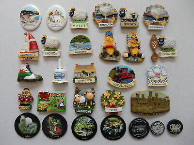 One Selected Souvenir Fridge Magnet from Wales