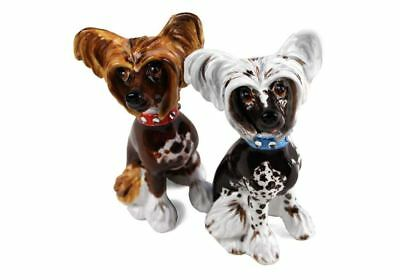 Chinese Crested Gift, Cruet Set Handmade by Blue Witch
