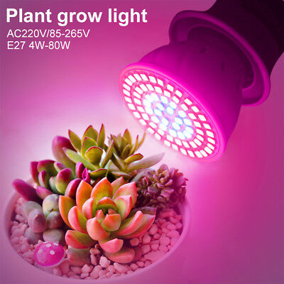 Low Heat E27 LED Grow Light Plant Culturing Lamp For Indoor Desktop Flowers 5F1