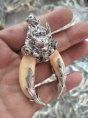Chinese Antique Boars Tooth Wild Hog Silver Dragon protective talisman Pendant