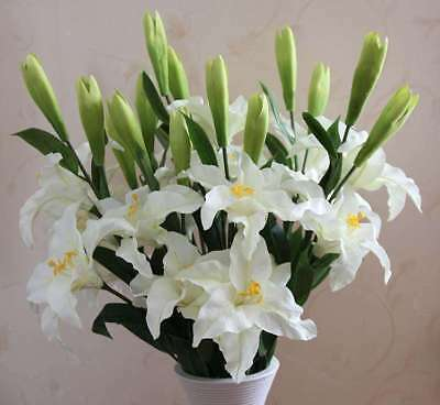 500X Mixed Colors Lily Seeds Indoor Bonsai Perfume Lily Flower Seeds NS