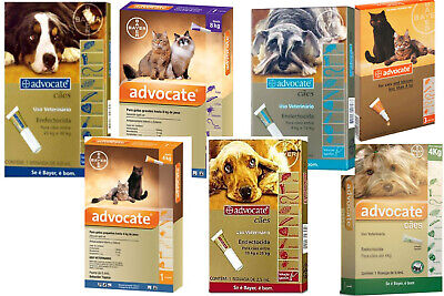 ADVOCATE Antiparasitaires chats cats dog hund chien boite 3 pipettes puces poux