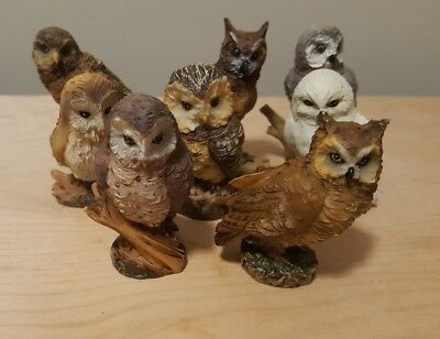 """8 Unique Owl 2 1/2"""" Figure Figurine Collection Snowy Horned White Grey Barred"""