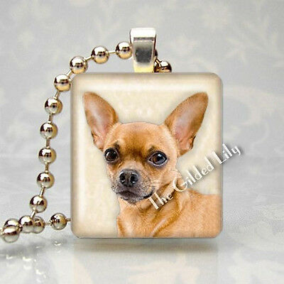 CHIHUAHUA DOG BREED PET PUPPY Scrabble Tile Altered Art Pendant Jewelry Charm