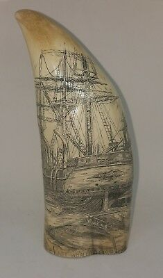 """REPLICA FAUX RESIN SCRIMSHAW WHALE TOOTH The Last Whaler Charles W Morgan 7.5"""""""
