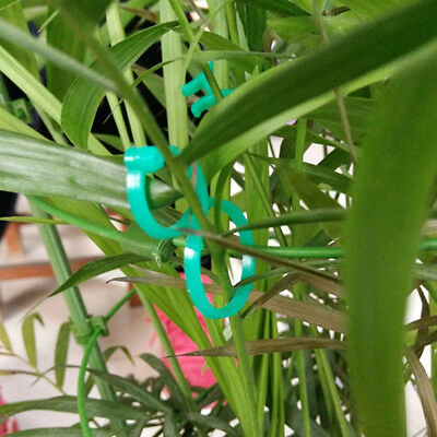 20X Ring Plant Ties Support Clips Flower Bush Vine Tree Cable Holder Garden Tool