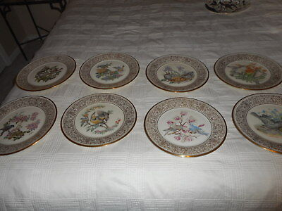 Lenox  Boehm Birds Series 24K Gold Decorated Plates  Lot Of 8