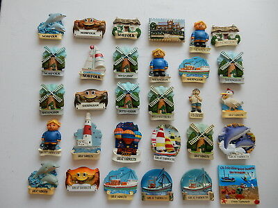 One Selected 3D Souvenir Fridge Magnet from Norfolk