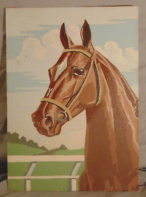 """Vintage PBN Paint By Number Horse Painting Unsigned & Unframed C. 1955 14"""" x 10"""""""