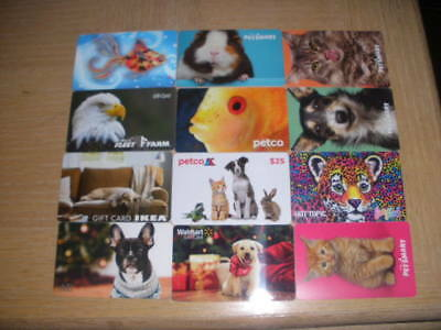 Animals   12 different new collectible gift cards