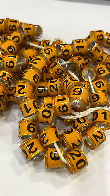 Top New quality numbered 1 to 50 pigeon birds leg feet mark rings bands orange