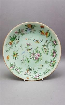 Antique 19Th Century Chinese Celadon Glaze Famille Rose Plate Signed