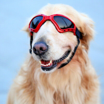 Large Dog Sunglasses UV Protection Waterproof Eyewear Dogs Goggles for M-L Pets