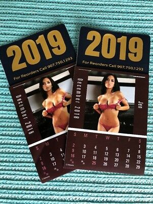 NEW 2019 Dash Calendars Lot Of Two~early pricing~free postage~no sales tax