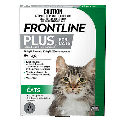Frontline Plus 6-Pack Fleas and Lice Control For Kittens and Cats - Green