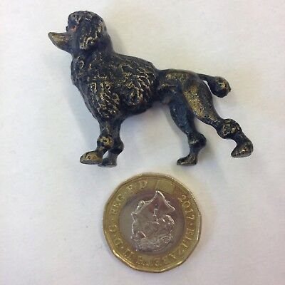 Miniature Cold Painted Bronze figure Of A Poodle Probably Austrian
